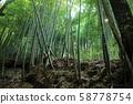 Takiyama Castle 58778754