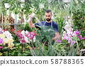 Man At Work As Florist In Flower Shop Using Spray 58788365