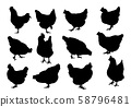Set realistic silhouettes of three hens or 58796481