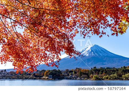 Mt. Fuji autumn leaves 58797164