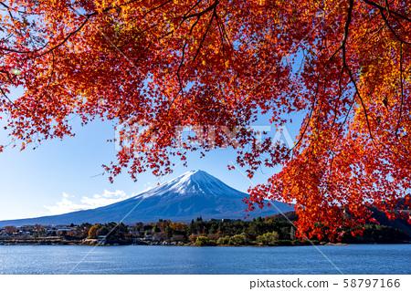 富士山秋叶 58797166