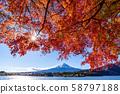 Mt. Fuji autumn leaves 58797188