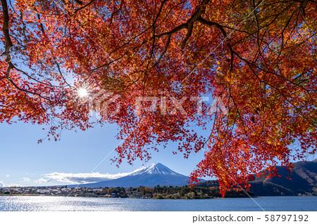 富士山秋葉 58797192