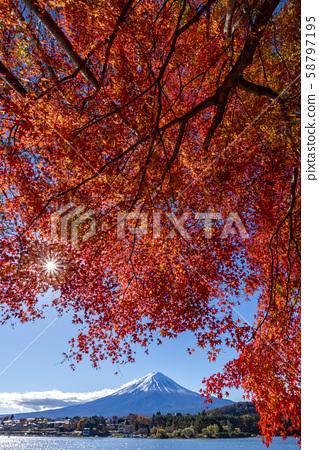 富士山秋叶 58797195