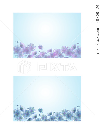 Floral postcard set 58800924
