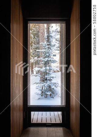 Winter snow scene 58802758