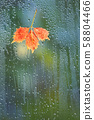 Autumn Leaves In Rainy Weather On The Window Glass 58804466
