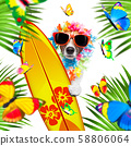 summer paradise vacation surfer dog 58806064