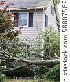 Tree falls hitting a house during summer storm 58807569