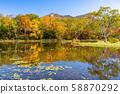 《长野县》长枝,滋贺高原与红叶 58870292