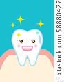 건강한 치아 캐릭터의 일러스트 illustration of healthy tooth 58880427