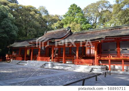 [Oita Prefecture] Usa Shrine / Shimomiya 58893711
