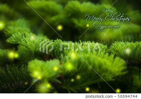 耶穌降生,柏木,星星,聖誕節,ino木,爆炸形,聖誕,柏樹 58894744