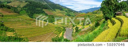 Panorama view of terraced rice field in Mu Cang 58897046