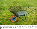 Wheelbarrow full of grass. Garden and lawn care theme. Care services area 58921719