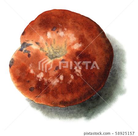 수채화로 그린 블루 베리 베이글 빵 58925157