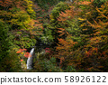 Nara Prefecture Koyasan's colored leaves and autumn waterfall scenery 58926122