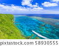 Irabu Island_Superb view of coral reef 58930555