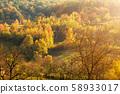 Autumn landscape. Autumn tree leaves. Orange and 58933017