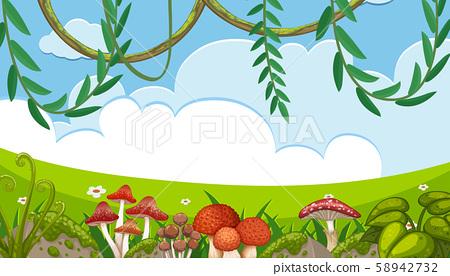 Mushroom and Vine in Nature Landscape 58942732