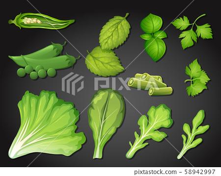 A Set of Fresh Green Vegetable 58942997