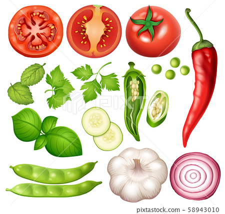 A Set of Vegetable on White Background 58943010