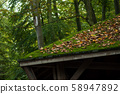 Closeup of tiles of roof covered by moss  58947892