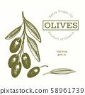 Olive branch illustration. Hand drawn vector food 58961739