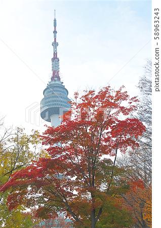 首爾塔前的紅色楓葉 58963243