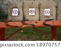 Bows and arrows 58970757