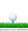 golf ball in grass 58989064