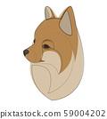 Continuous line Pomeranian spitz. Single line minimal style Spitz dog vector illustration. Portrait 59004202
