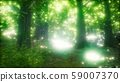 8K Morning in the Misty Spring Forest with Sun 59007370