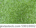 Green leaves background, Grass background and wallpaper 59010002