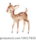 Cute Watercolor Drawing of the Baby Deer over white. Foreat anomals Baby Deer full profile 59017836