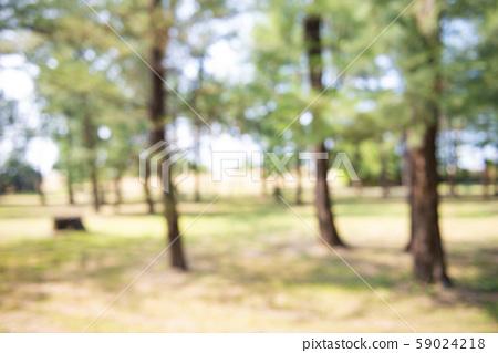 Blur park garden tree in nature background 59024218