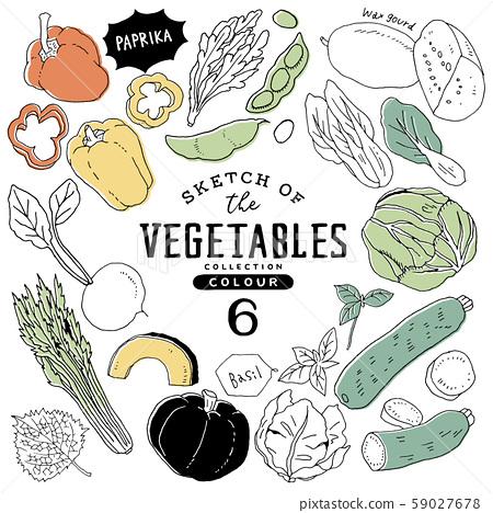 簡約時尚手繪蔬菜套裝06 /多彩 59027678