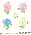Hydrangea vector set, cards, seamless pattern, background 59034287