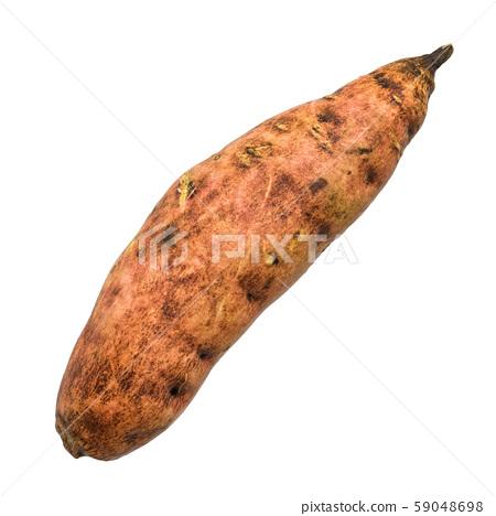 Sweet potato, yam 3d rendering 59048698