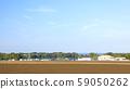 大根畑 59050262