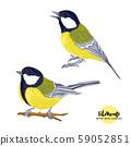 Tit birds - a symbol of winter. Set of elements  59052851