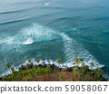 Aerial view of coconut trees at seaside the 59058067
