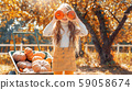 Little girl covered face with two small pumpkin 59058674