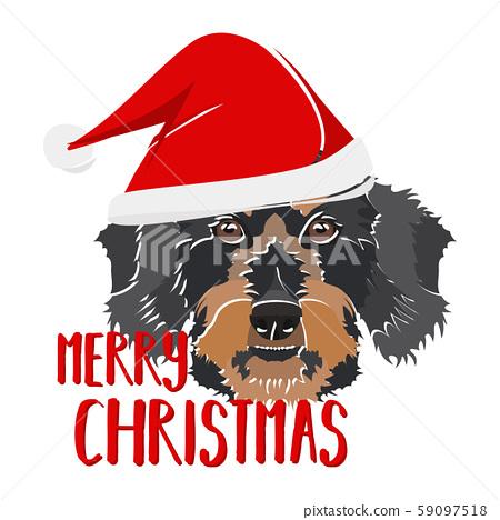 Illustration dog Rauhaardackel Merry Christmas 59097518