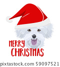 Illustration dog Maltese Merry Christmas 59097521