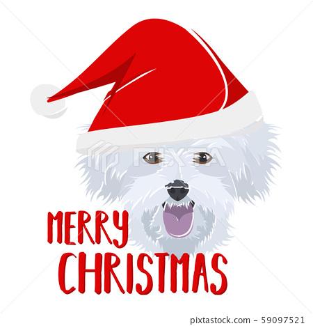 Illustration dog Maltese Merry Christmas 59097521