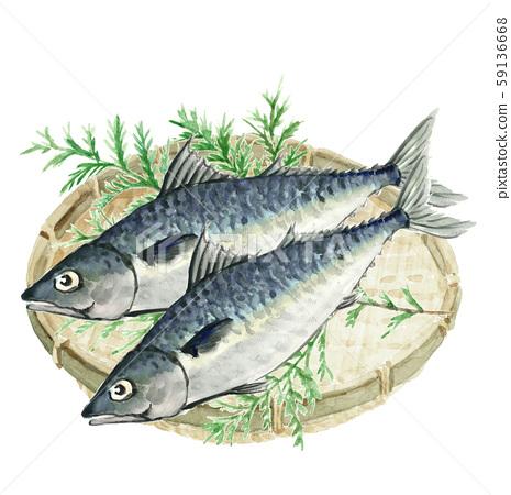 鯖魚鯖魚鯖魚希巴漏勺水彩 59136668