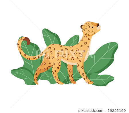 Cute Leopard Character Looking Up In the Sky Vector Illustration 59205169