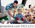 A father and toddler boy outdoors in summer, putting firewood in wheelbarrow. 59211211