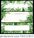 Tropical leaves banners. Exotic palm leaf banner, natural coconut palms branch frames and jungle 59211813